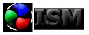 logo ISM